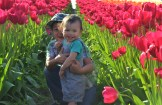 I think this is when the tulip poice were coming ')